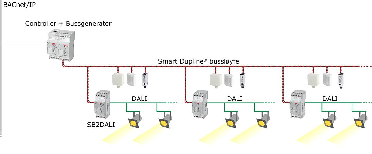 Skisse med DALI lysstyring utendørs